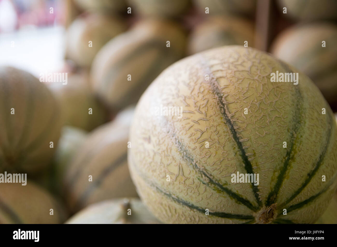 mature melons just picked up for sale by grocery store - Stock Image