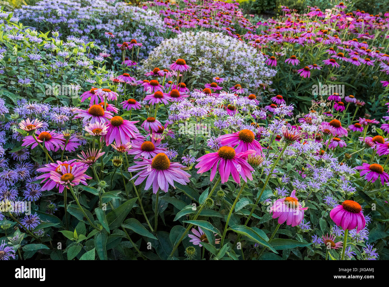 Medicine Wheel Garden High Resolution Stock Photography And Images Alamy