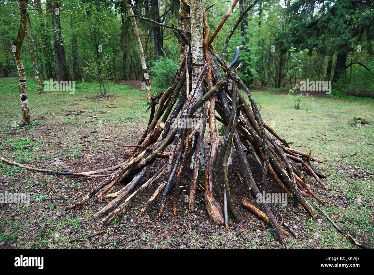 A hut of twigs in the forest. Nature, survival, the laws of life - Stock Image