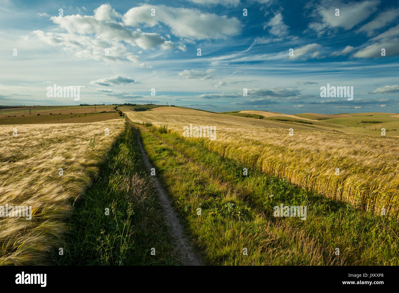 Monarch's Way hiking trail in South Downs National Park, West Sussex, England. - Stock Image