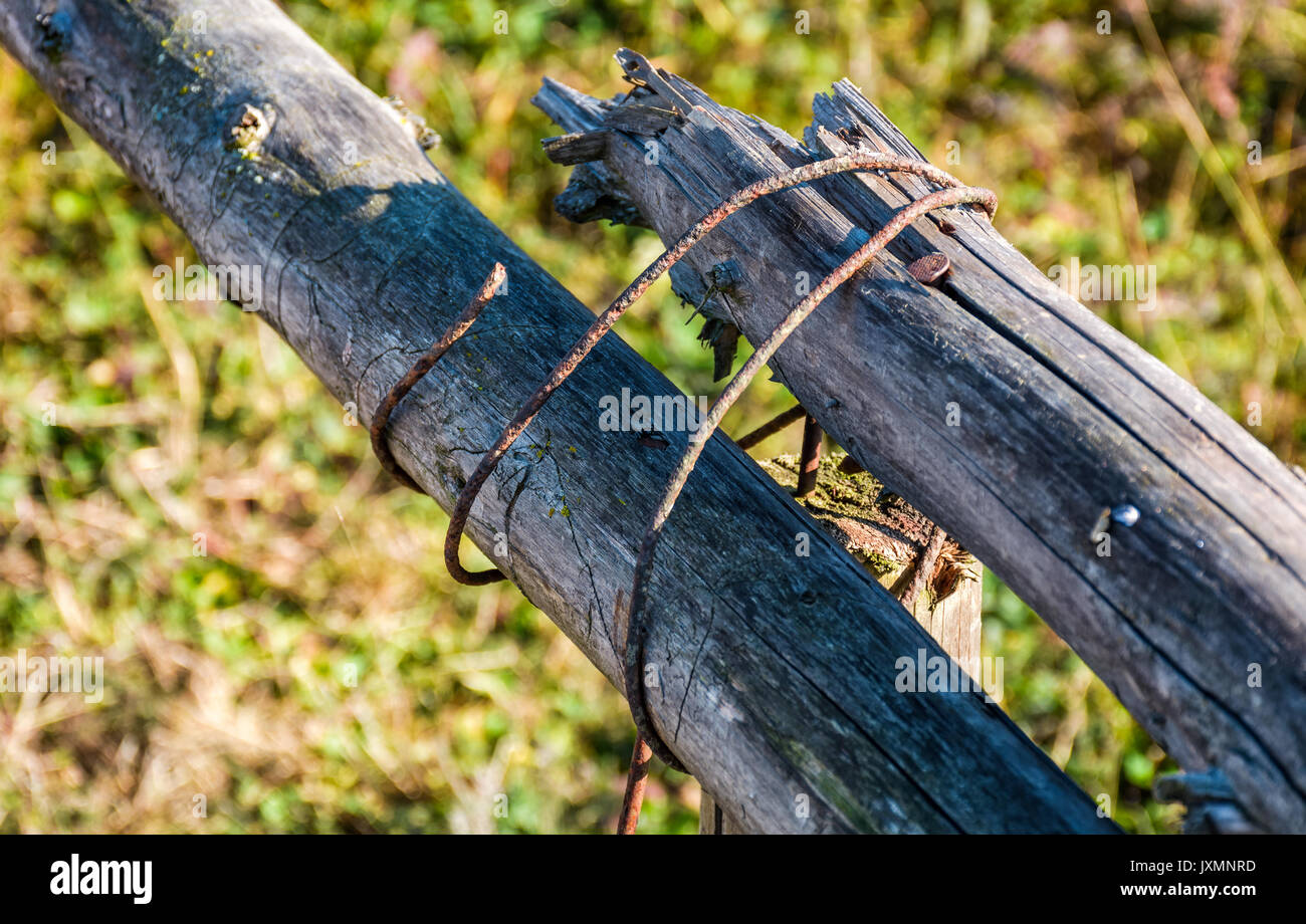 wooden fence details wrapped by a wire. simple rural style object on grassy  background -