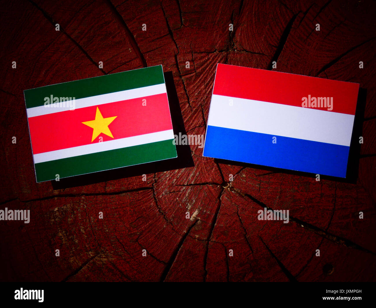 Suriname flag with Dutch flag on a tree stump isolated - Stock Image