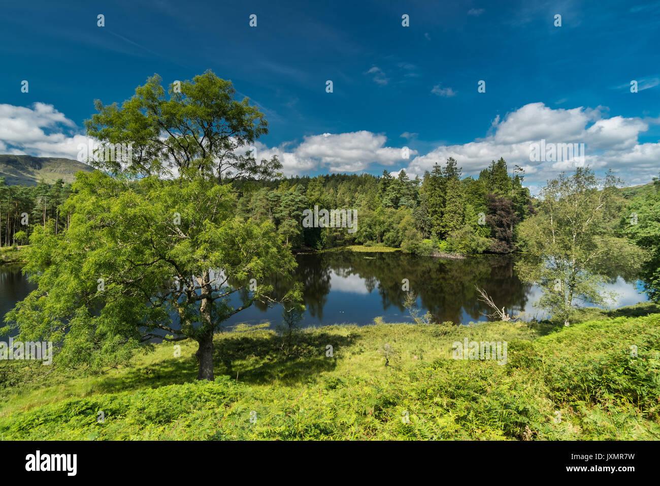 Tarn Howes Cumbria - Stock Image