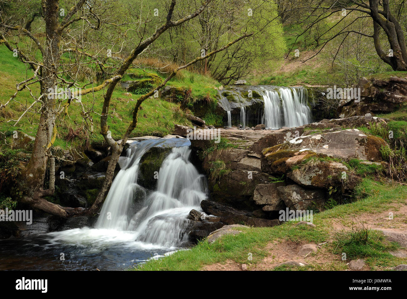 Two small waterfalls on the Afon Caerfanell, near its confluence with the Nant Bwrefwr. - Stock Image