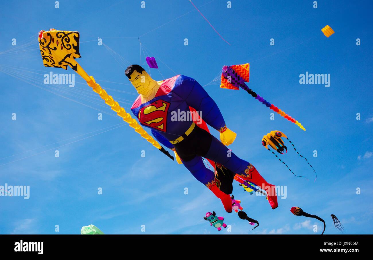 A superman kite flying against a blu sky next to fish ray kites a superman kite flying against a blu sky next to fish ray kites publicscrutiny Gallery