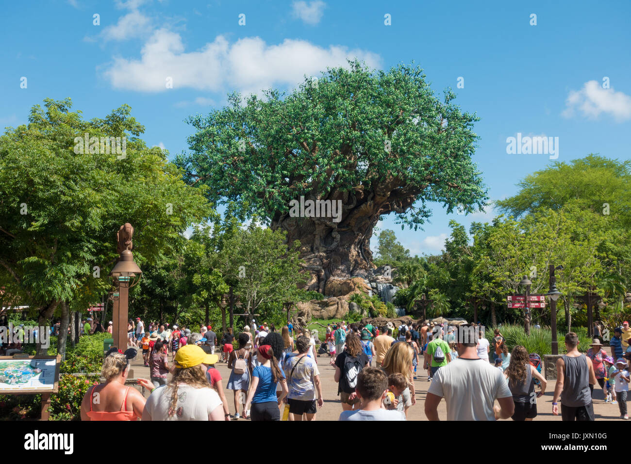 Tree of Life in Disneys Animal Kingdom Theme Park, Orlando, Florida. - Stock Image