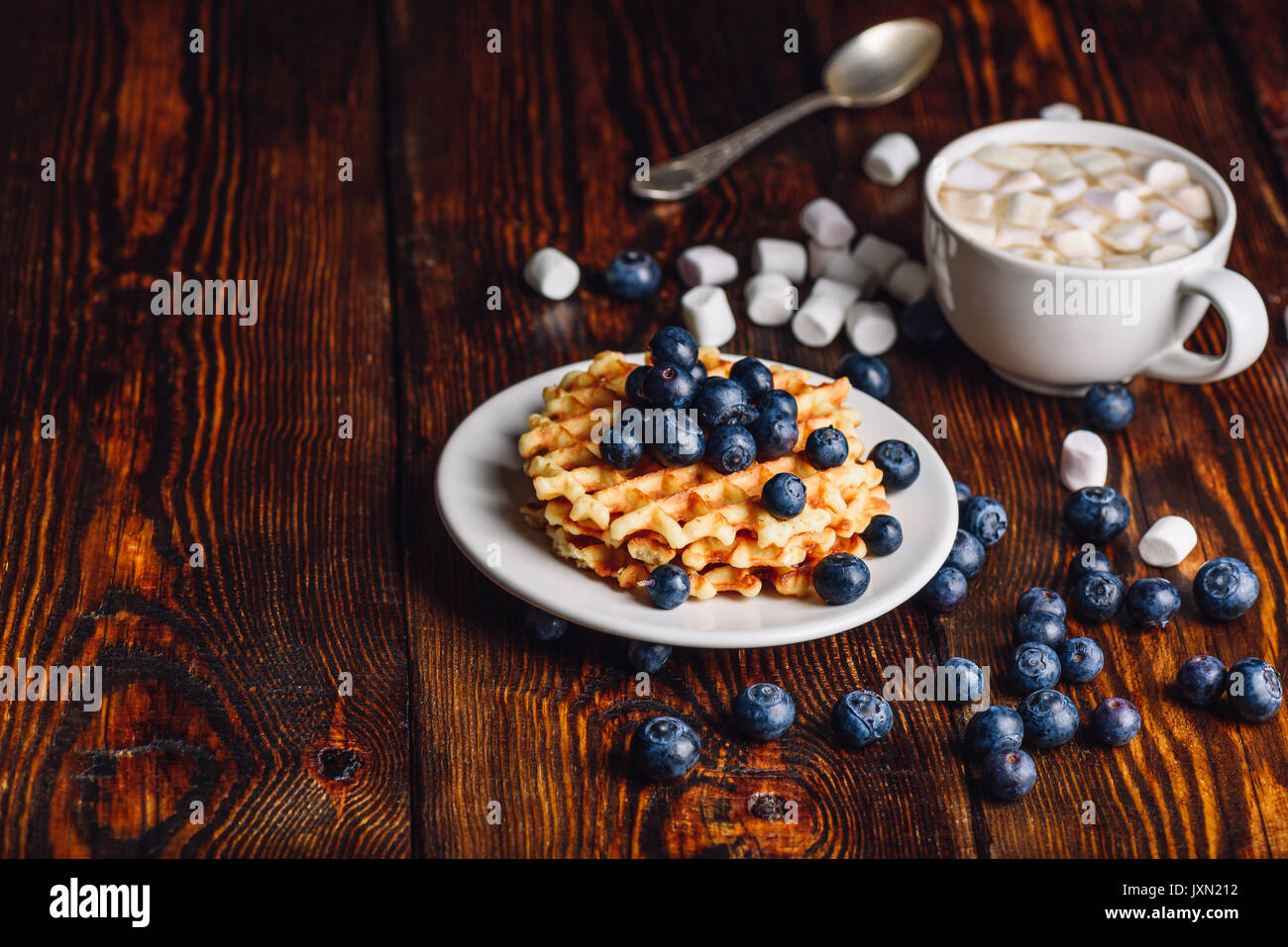 Belgian Waffles on White Plate with Fresh Blueberry and Cup of Hot Chocolate with Marshmallow. Copy space on the Left Side. - Stock Image