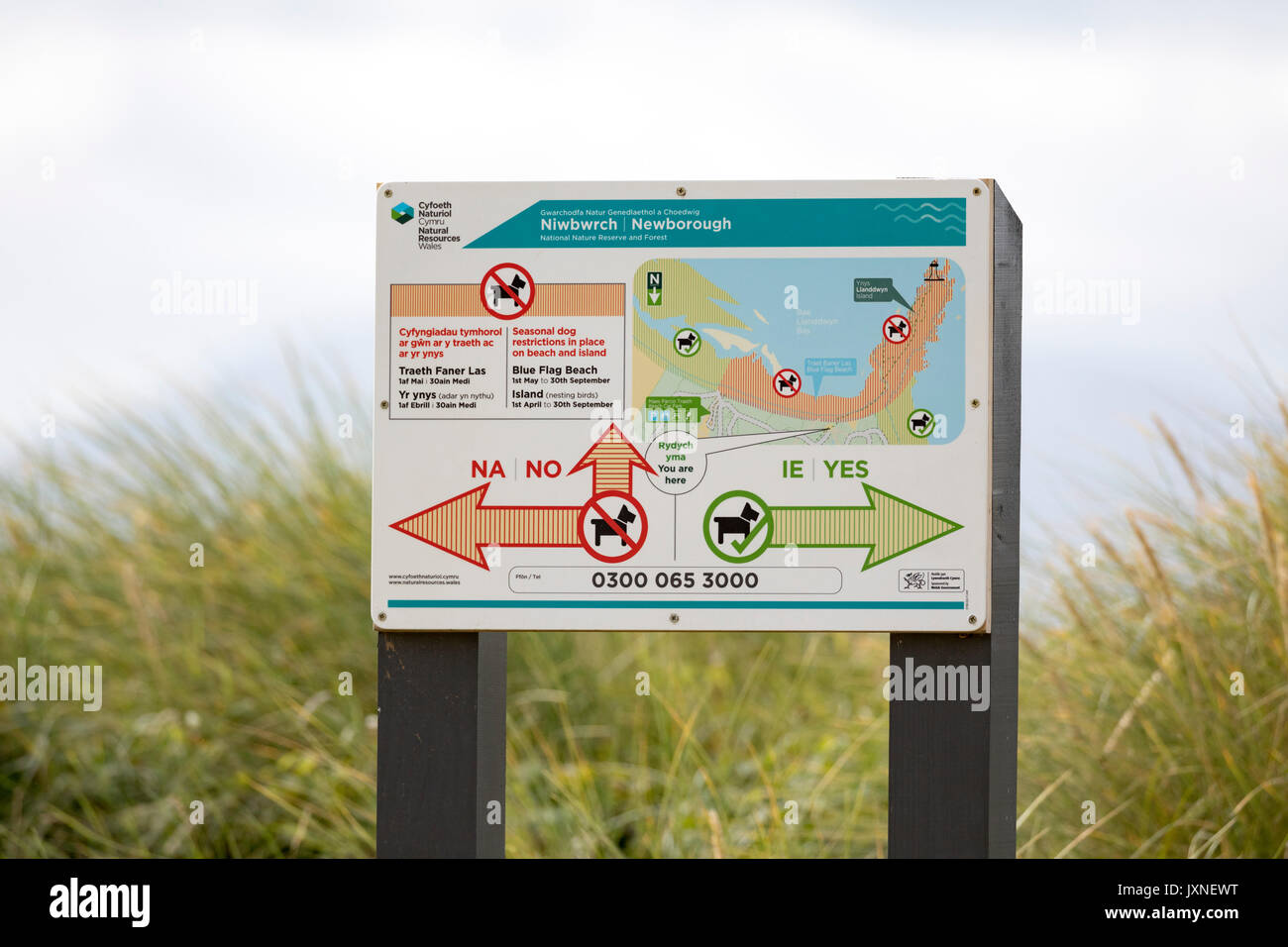 Sign showing dog friendly and dog restriciton areas on Newborough Beach with arrows to show direction, Newborough, Anglesey, Wales, UK - Stock Image