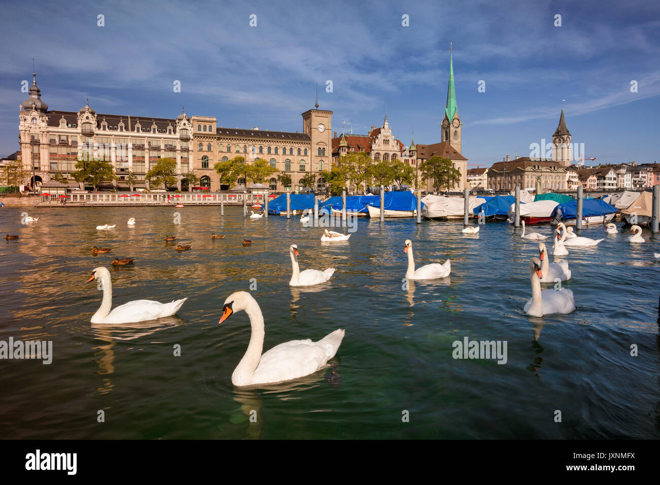 Zurich. Cityscape image of Zurich, Switzerland during sunny summer morning. - Stock Image