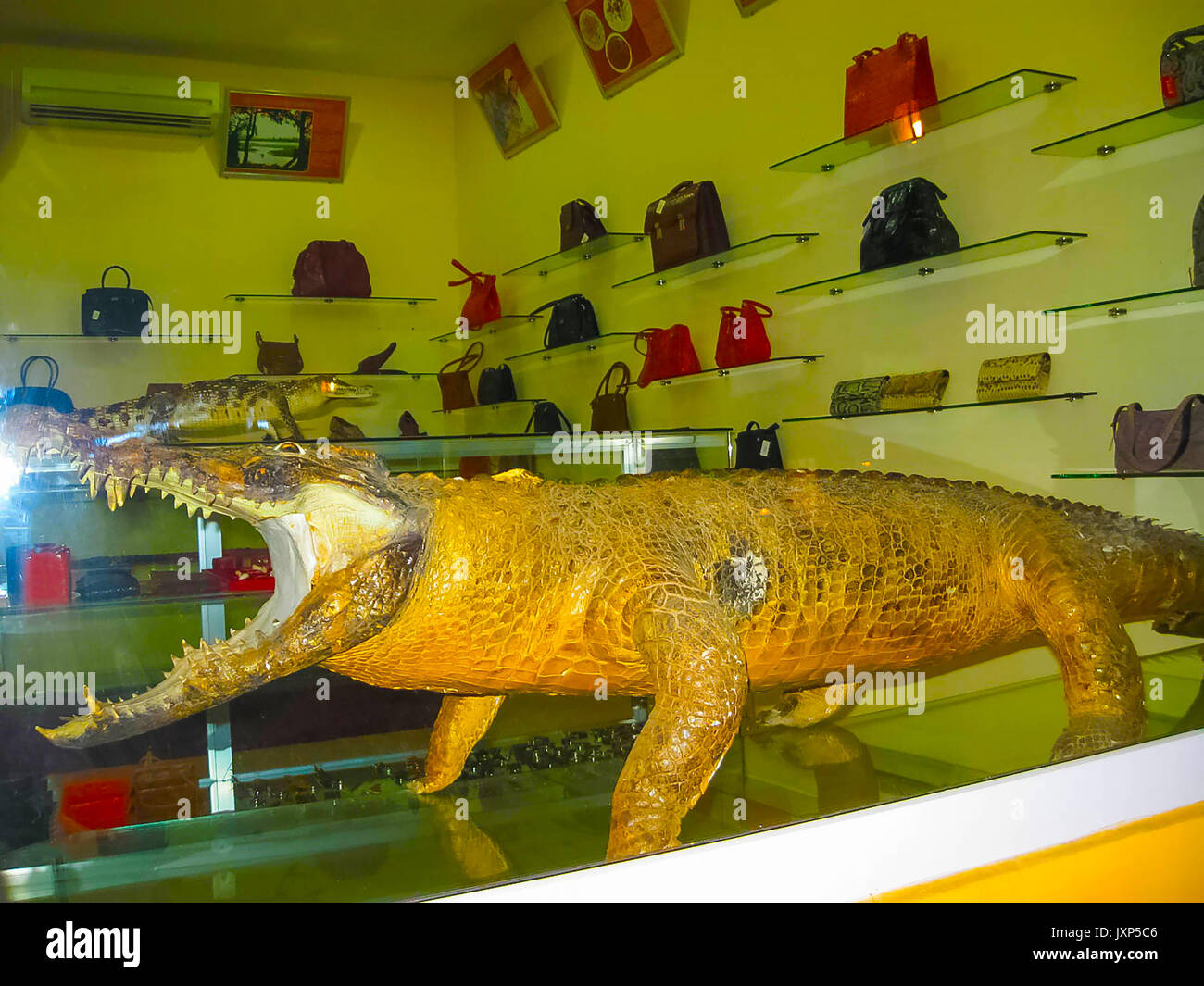 Nha Trang, Vietnam - February 12, 2011: The Shop of souvenirs and handbags from the products of crocodile leather - Stock Image