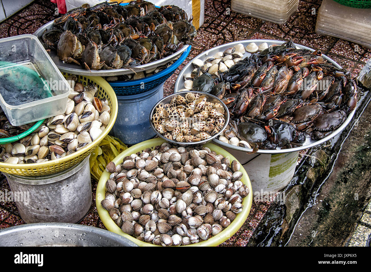 Snail's and crabs for sale in an open air market in Hanoi,  Vietnam. - Stock Image