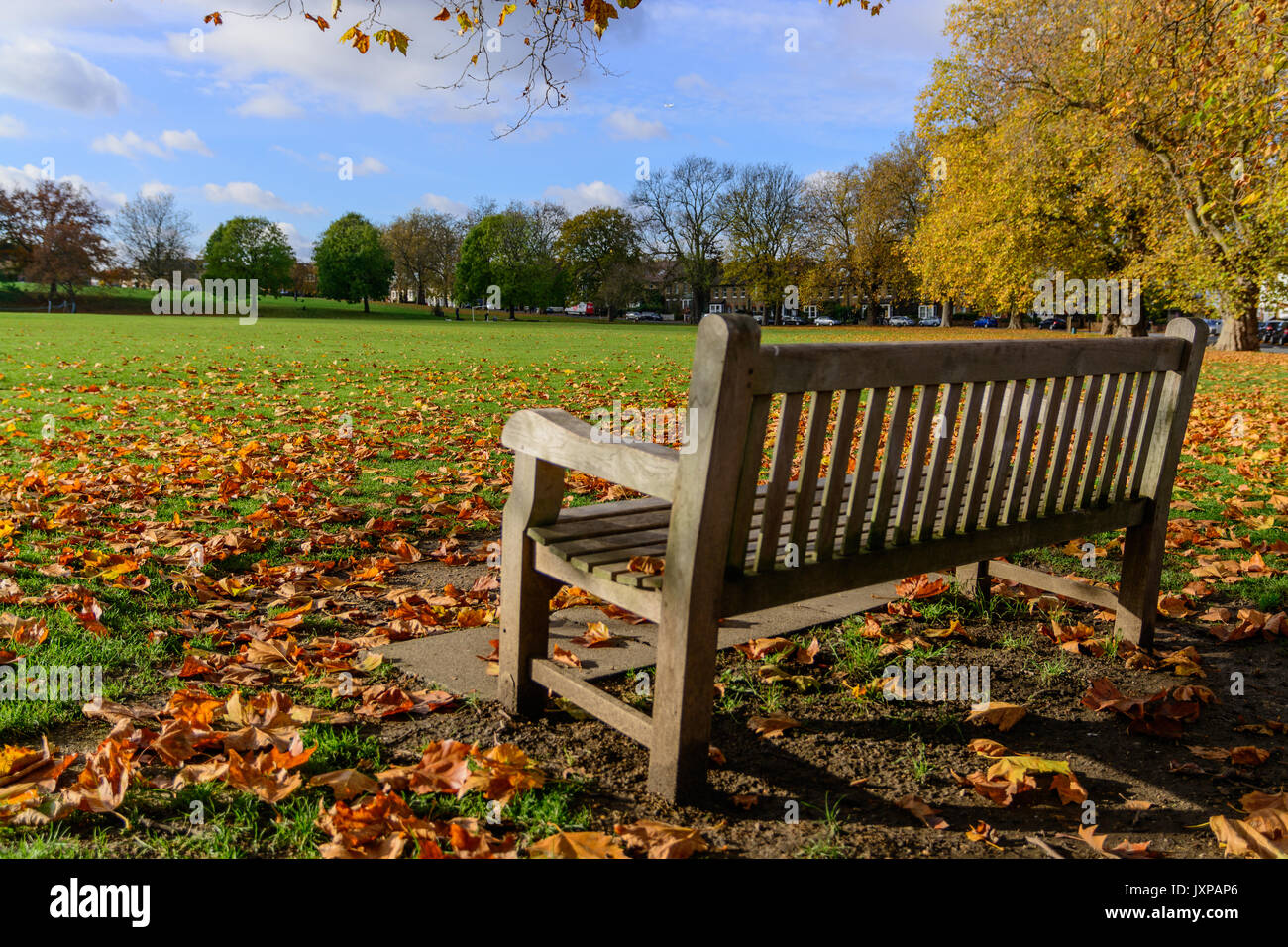 Empty wooden bench in Hilly Fields in Brockley (London) at fall with foliage. Landscape format. - Stock Image