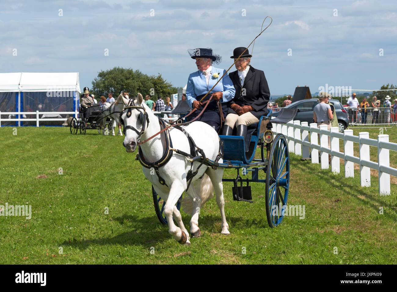 two mature ladies in a pony and trap cat at a countryside event in cornwall, england, uk. - Stock Image