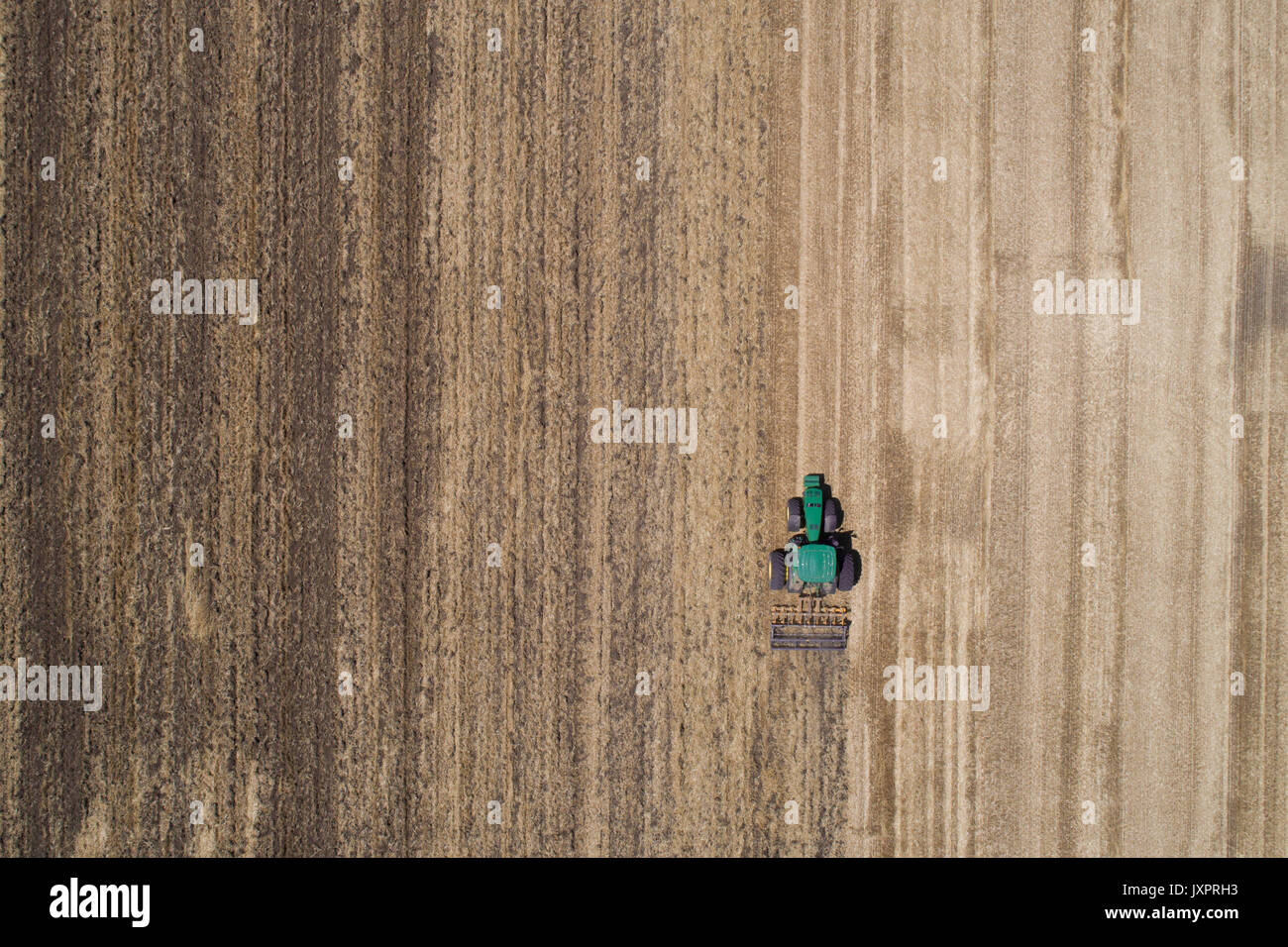 Tractor working in golden wheat field after harvest. Aerial image of agricultural seasonal works - Stock Image