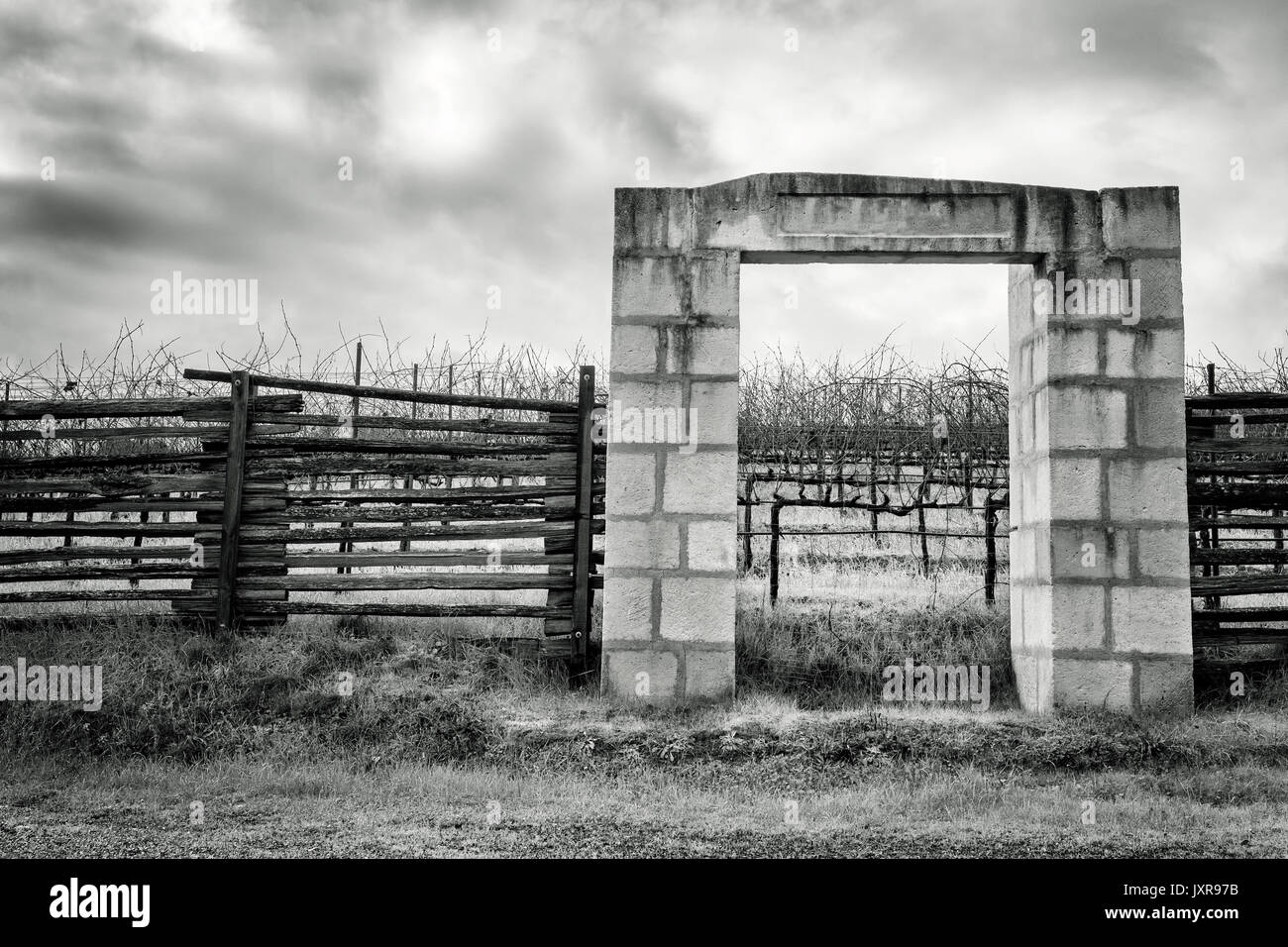 California vineyard and gate made of stone blocks. Black and white image - Stock Image