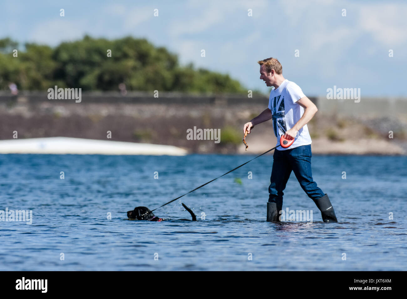 Chasewater Country Park, Burntwood, UK. 17th Aug, 2017. UK Weather. A wet start to the day gave way to glorious summer sunshine in the afternoon which saw people taking full advantage at Chasewater Country Park, Staffordshire. Credit: Daniel James Armishaw/Alamy Live News - Stock Image