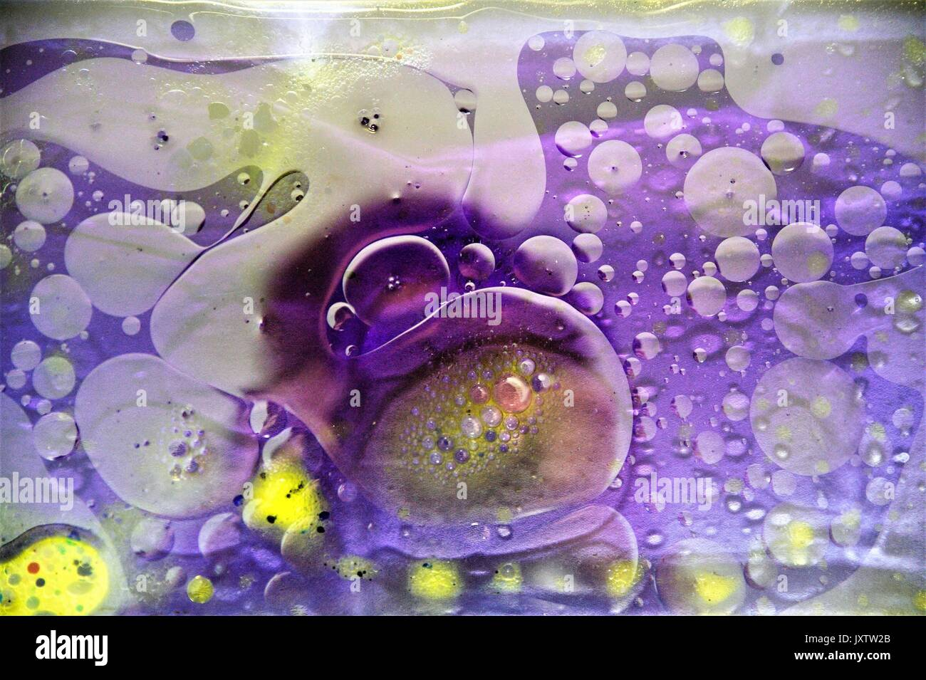 Artist making abstract art from oil and water. - Stock Image
