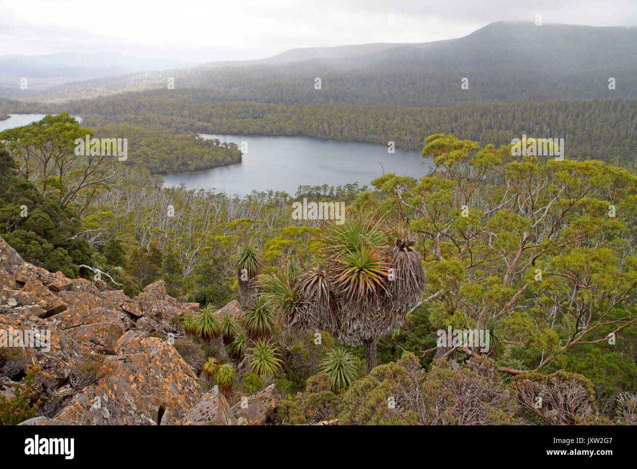 View over Forgotten Lake from Little Hugel in Cradle Mountain-Lake St Clair National Park Stock Photo