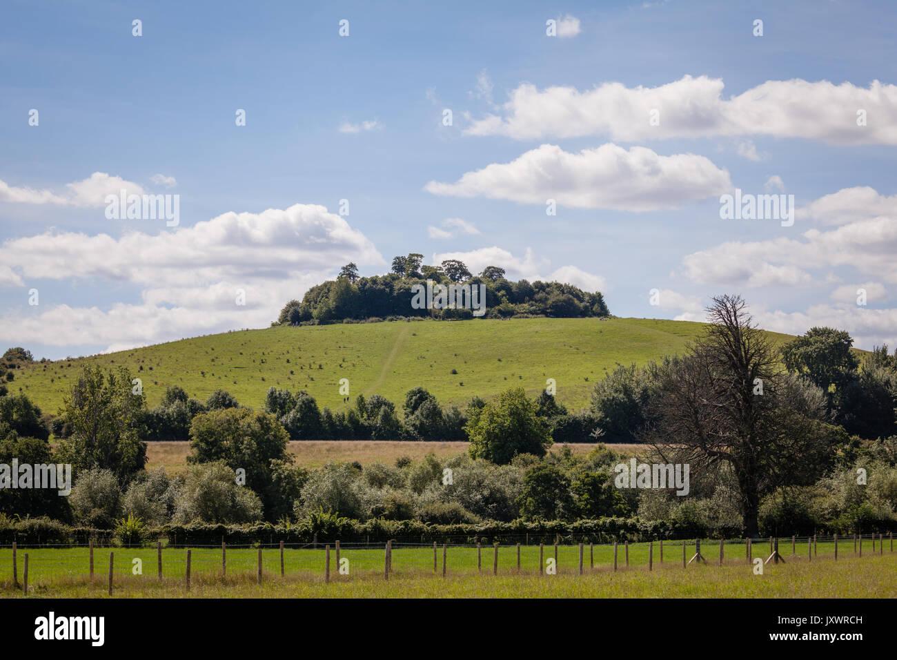 Wittenham Clups - Stock Image