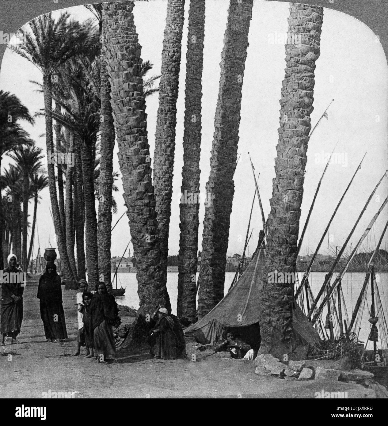 Die von Palmen eingefaßten Ufer des Nils, Ägypten 1896. The palm fringed Nile, Egypt 1896. Stock Photo