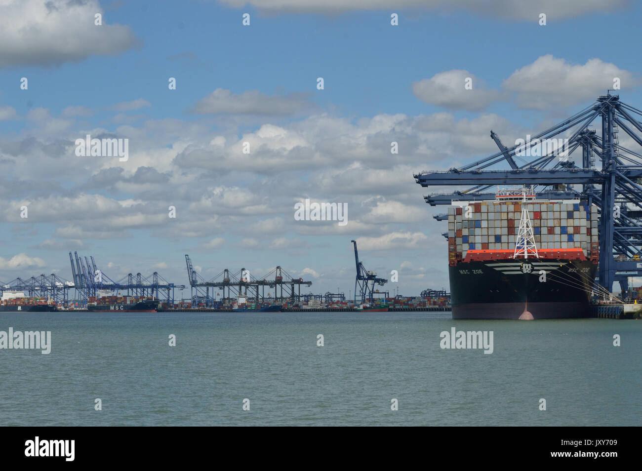 Container Ship MSC Rouge seen alongside at the Port of Felixstowe - Stock Image