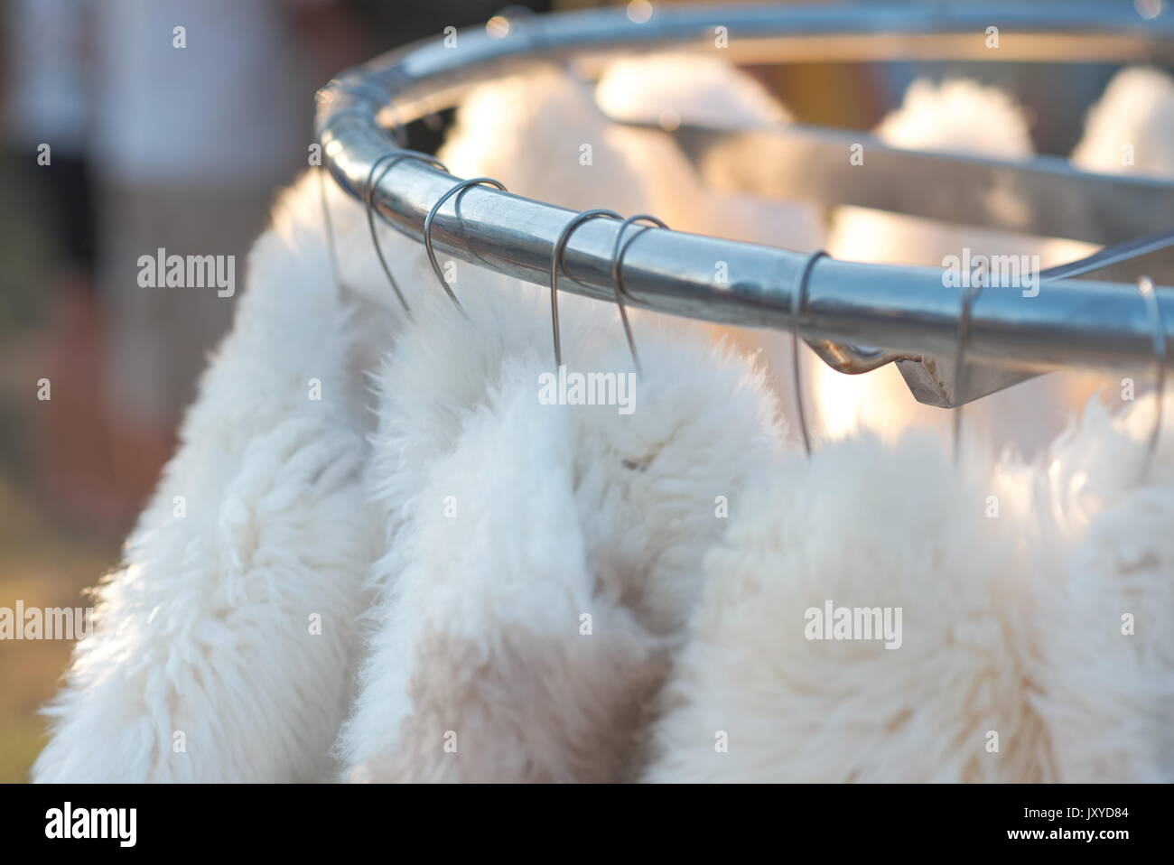Hanging White Sheep Furs Outdoor for Sale - Stock Image
