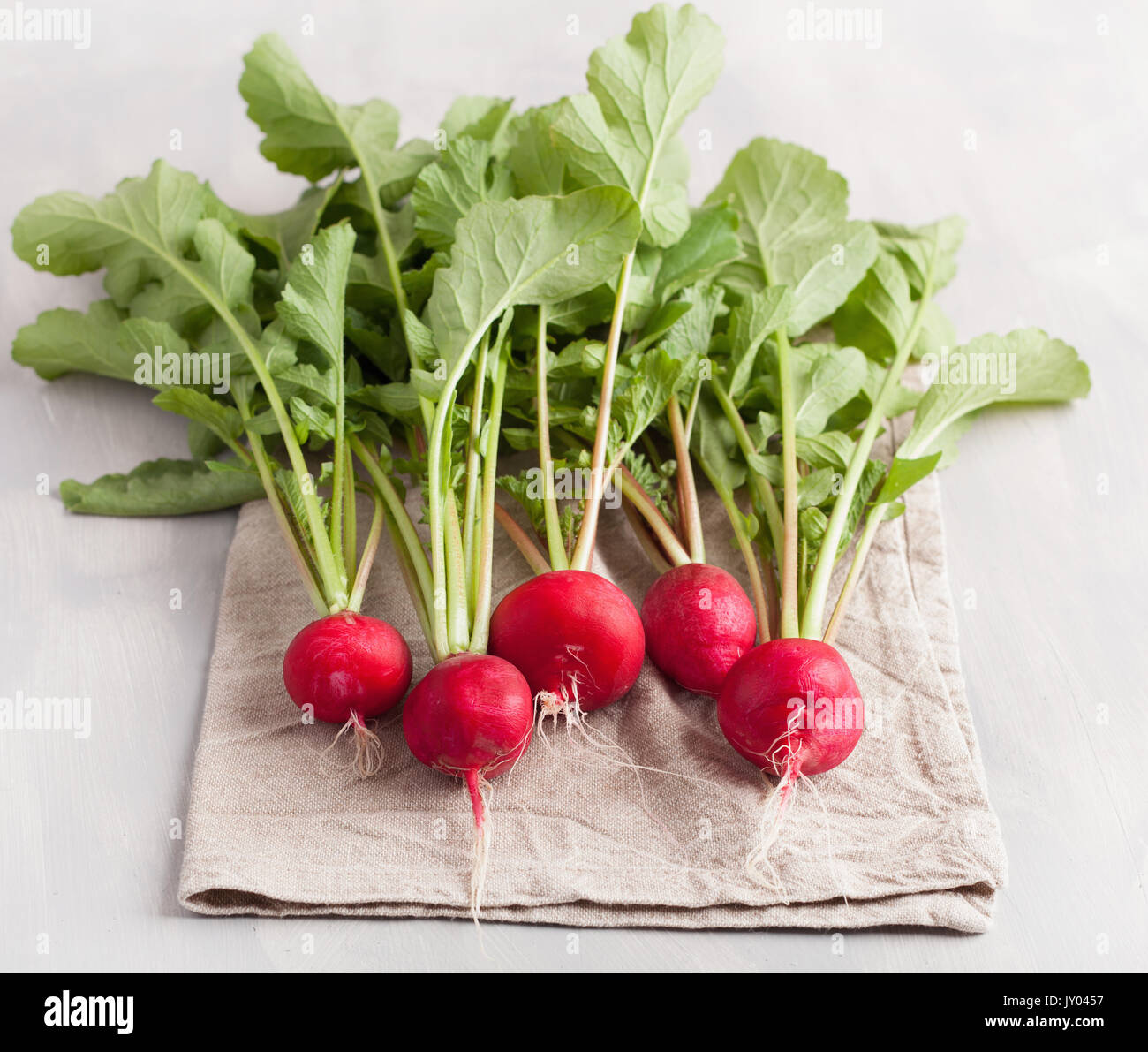 fresh raw radish with leaves over gray background - Stock Image