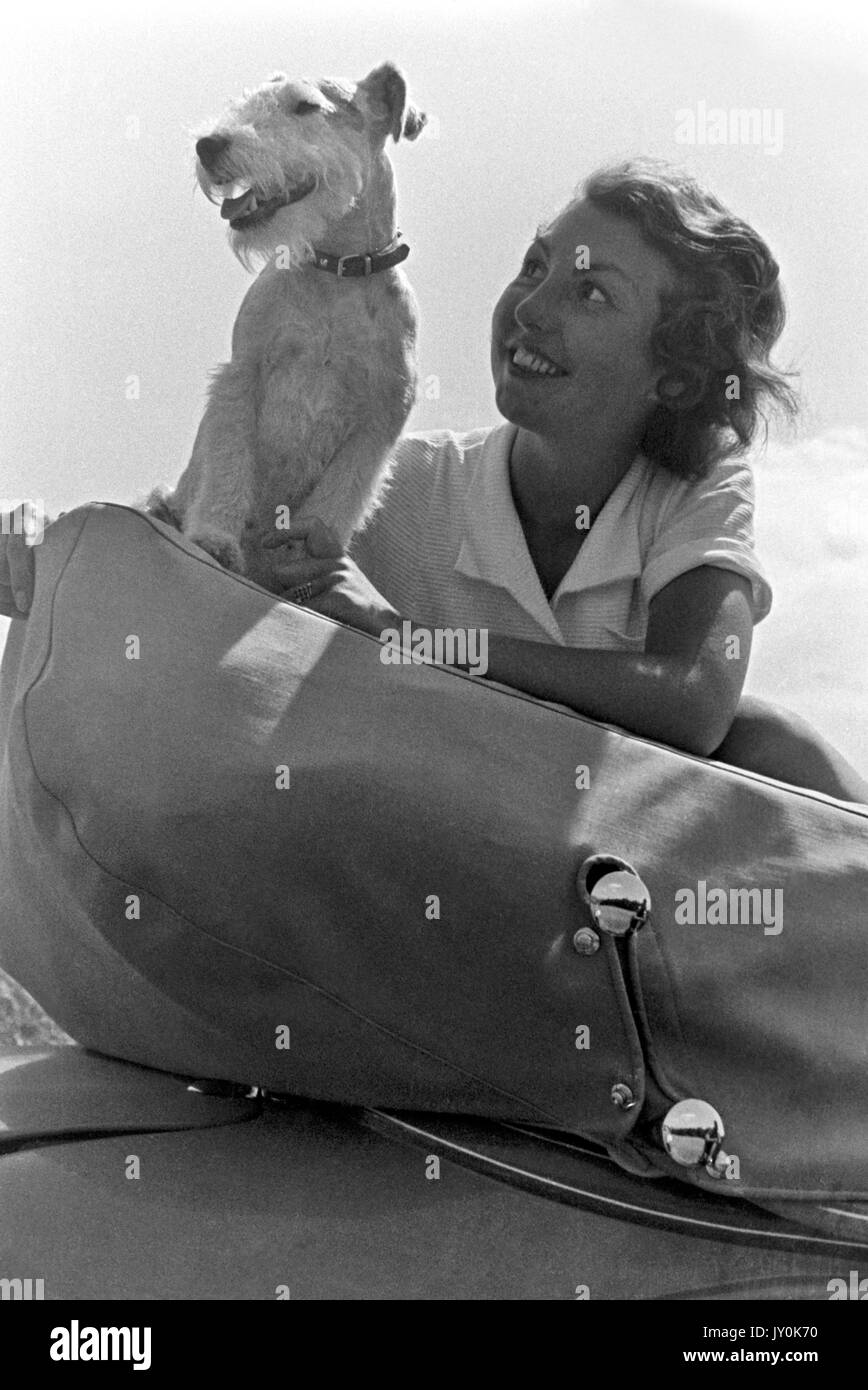 Woman with fox terrier sitting on folding fabric top of convertible. - Stock Image