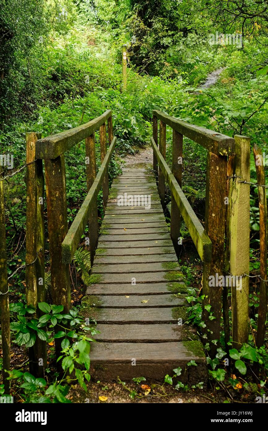 Wooden Bridge - Stock Image