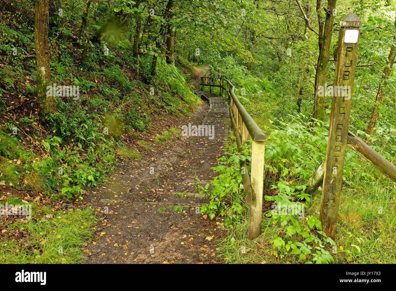 Foot path - Stock Image