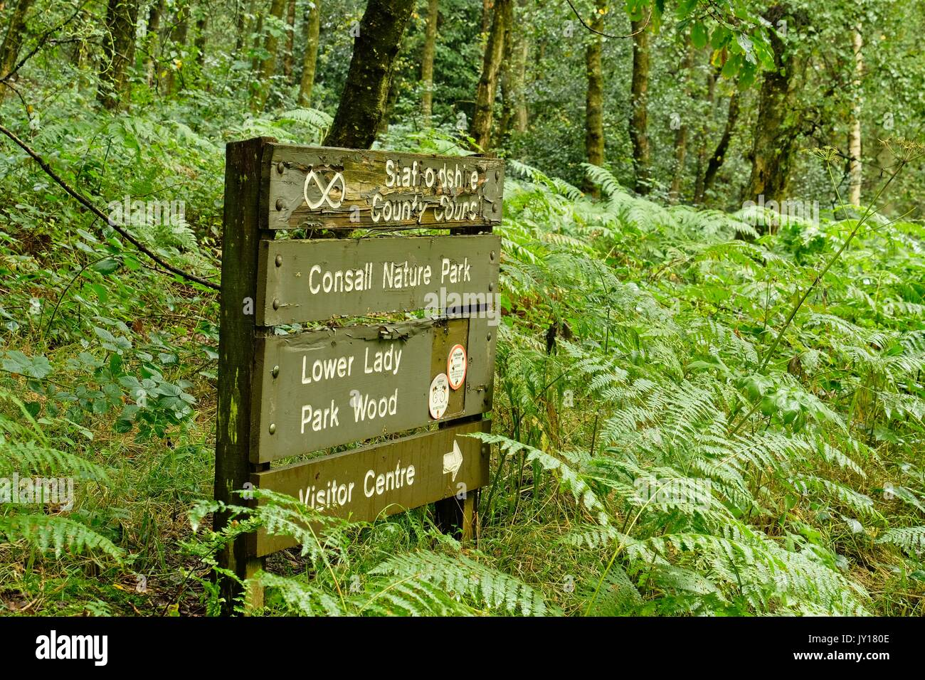 Consall Nature Park - Stock Image