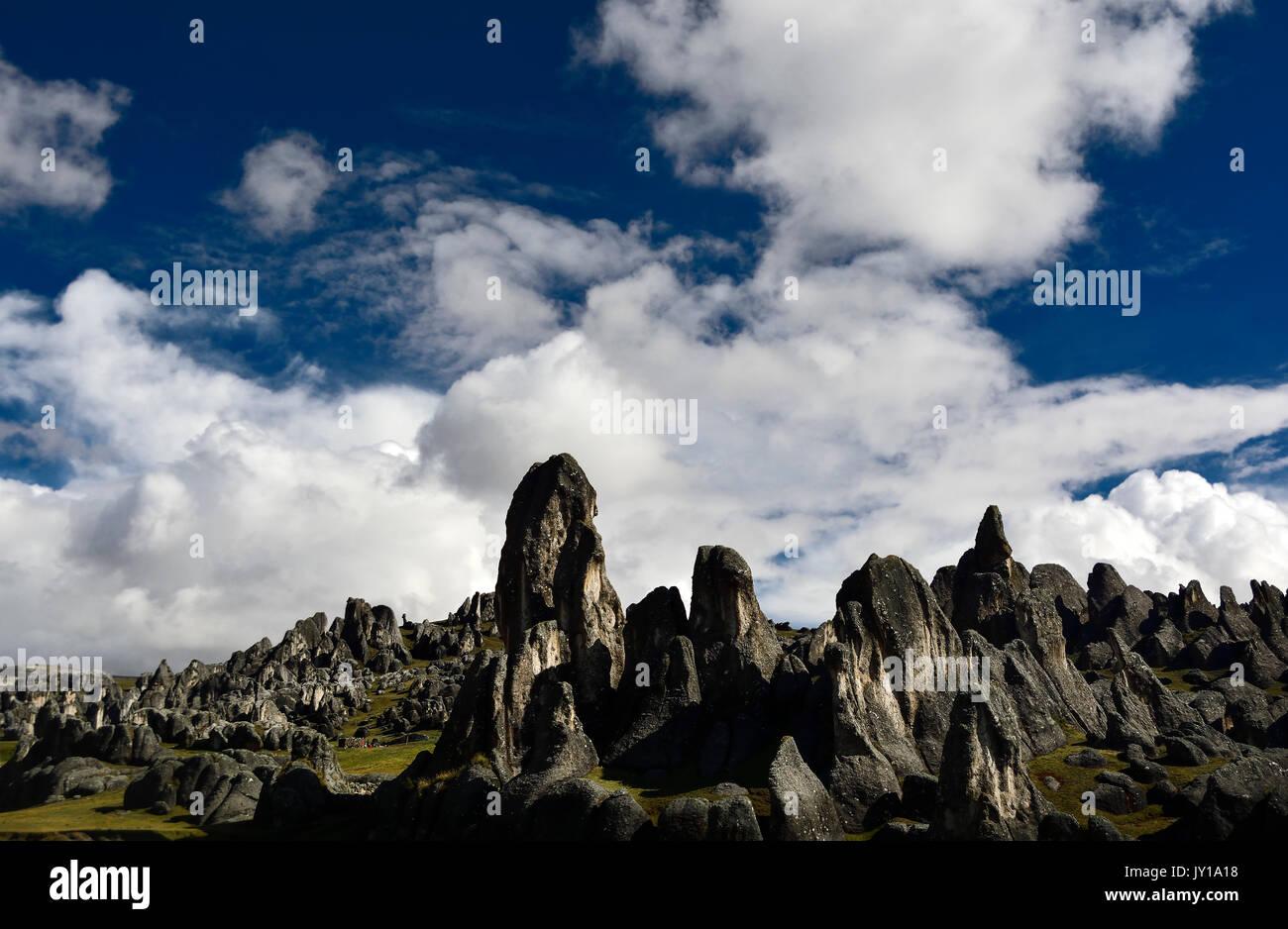 landscape at bosque de piedra - stone forest , in peru - Stock Image