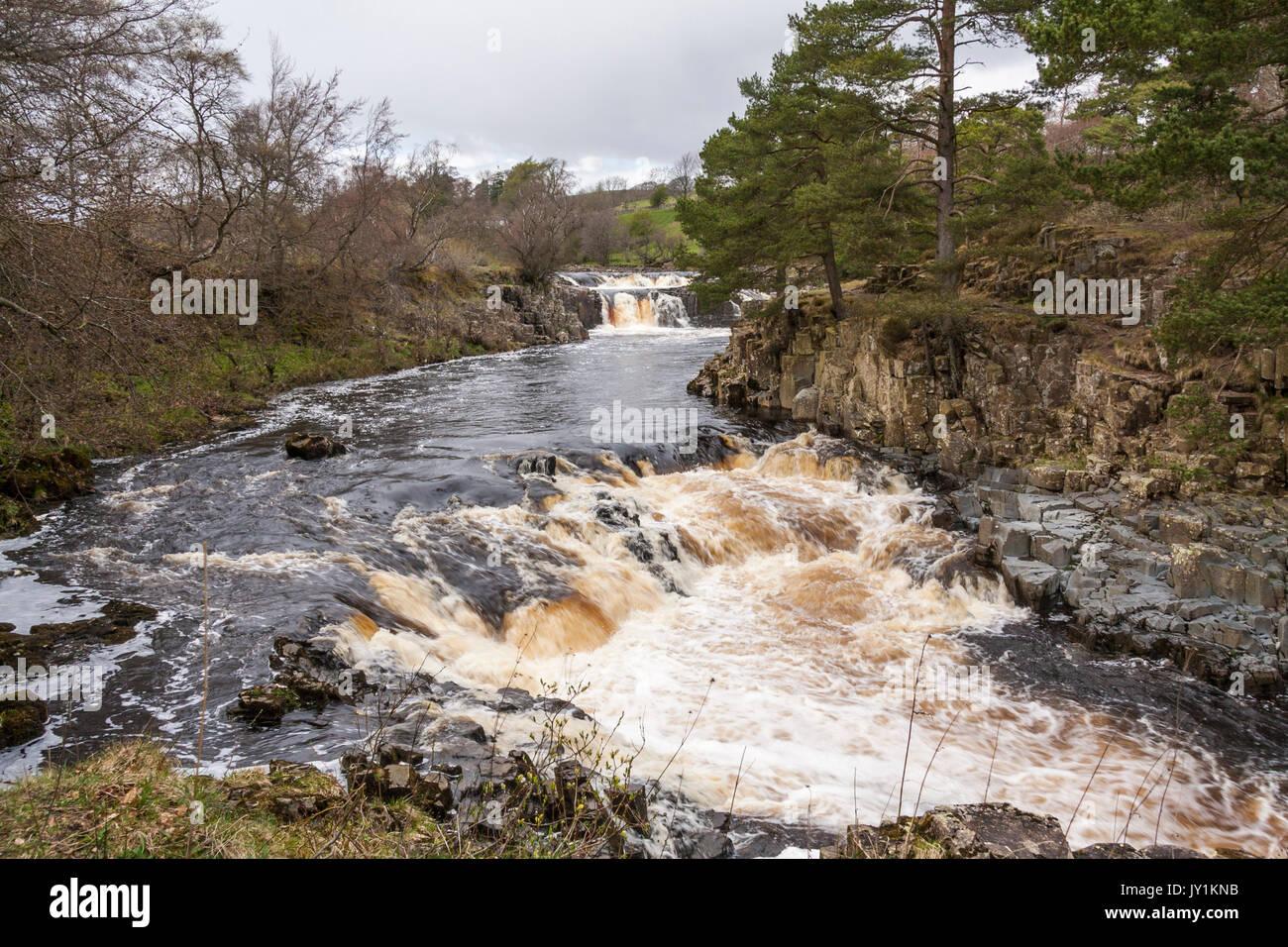 Waterfalls at Low Force,Bowlees,Teesdale,England,UK - Stock Image