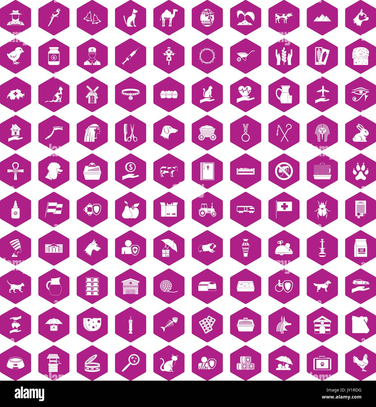 100 pets icons hexagon violet - Stock Image