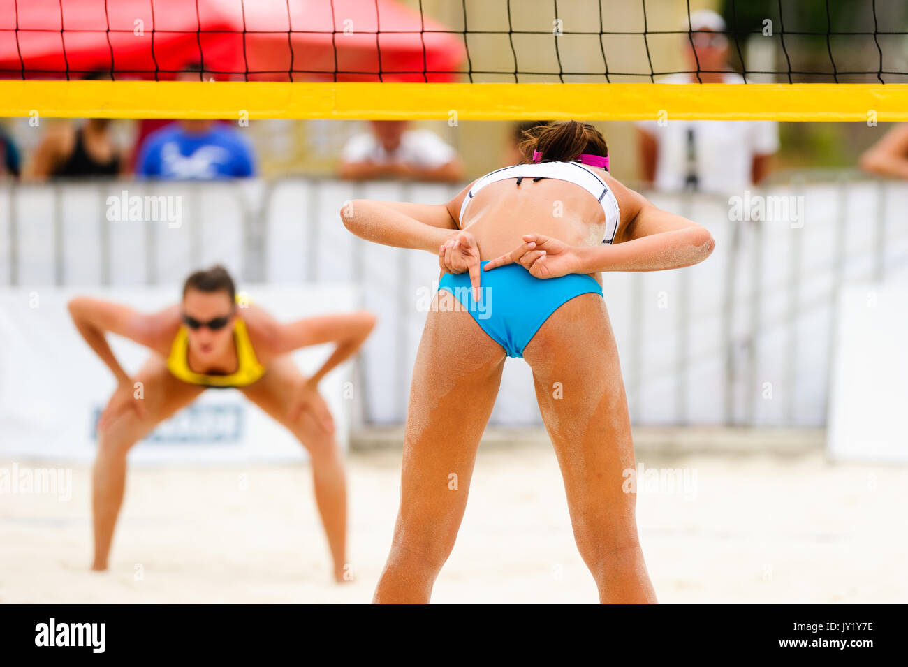 Volleyball player is a female beach volleyball beach player giving hand signals to her team mate while she faces her opponent across the net. - Stock Image