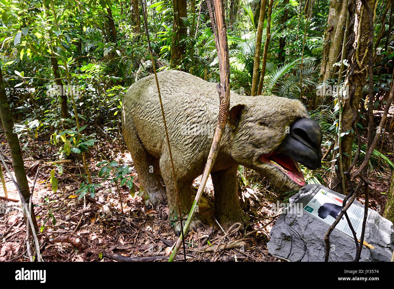 Giant Wombat (Diprotodon optatum), extinct Australian megafauna in the Jurassic Forest, Daintree Discovery Centre, QLD, Queensland, Australia - Stock Image