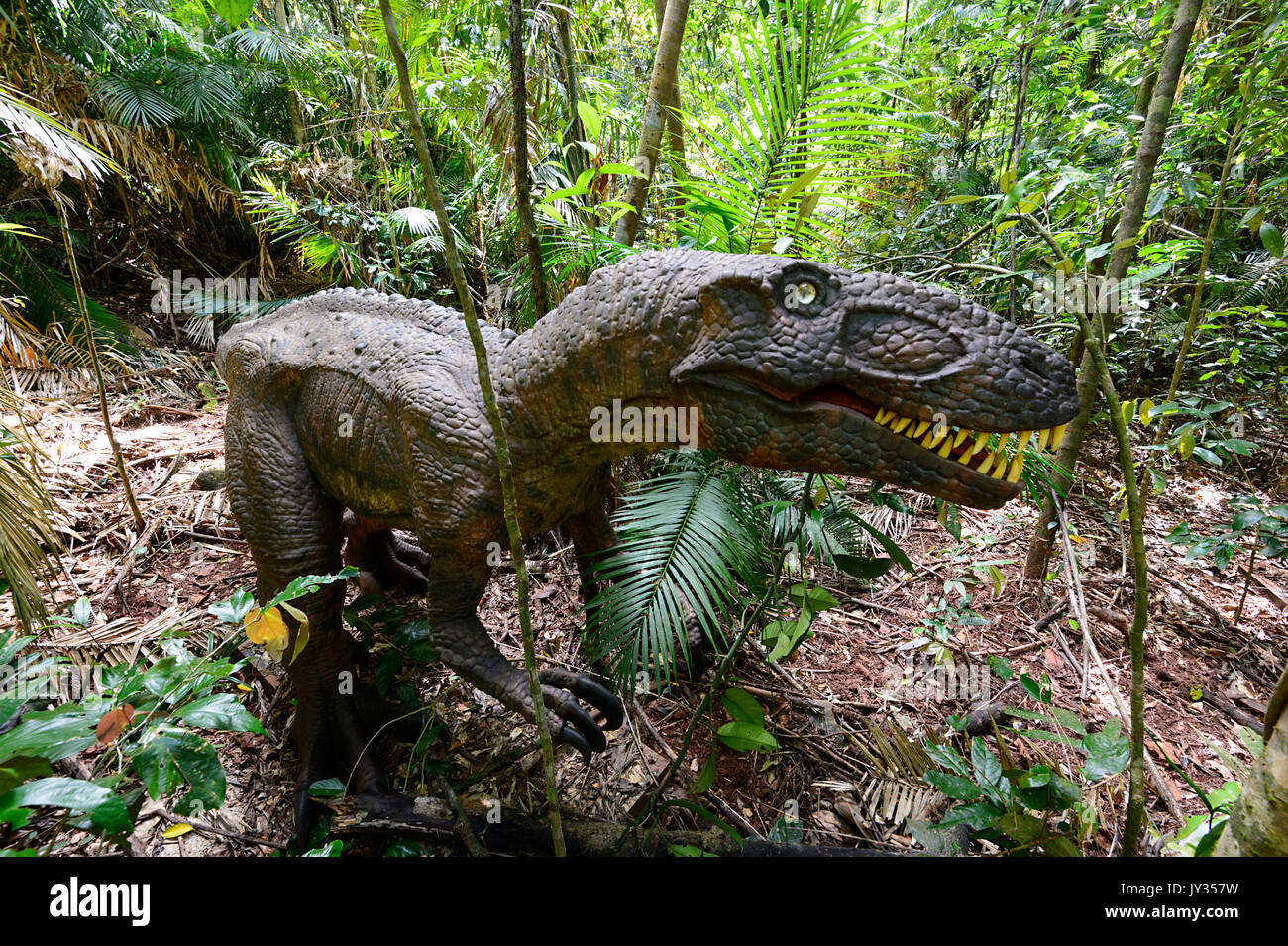 Australovenator wintonensis (Theropod) in the Jurassic Forest, Daintree Discovery Centre, QLD, Queensland, Australia - Stock Image