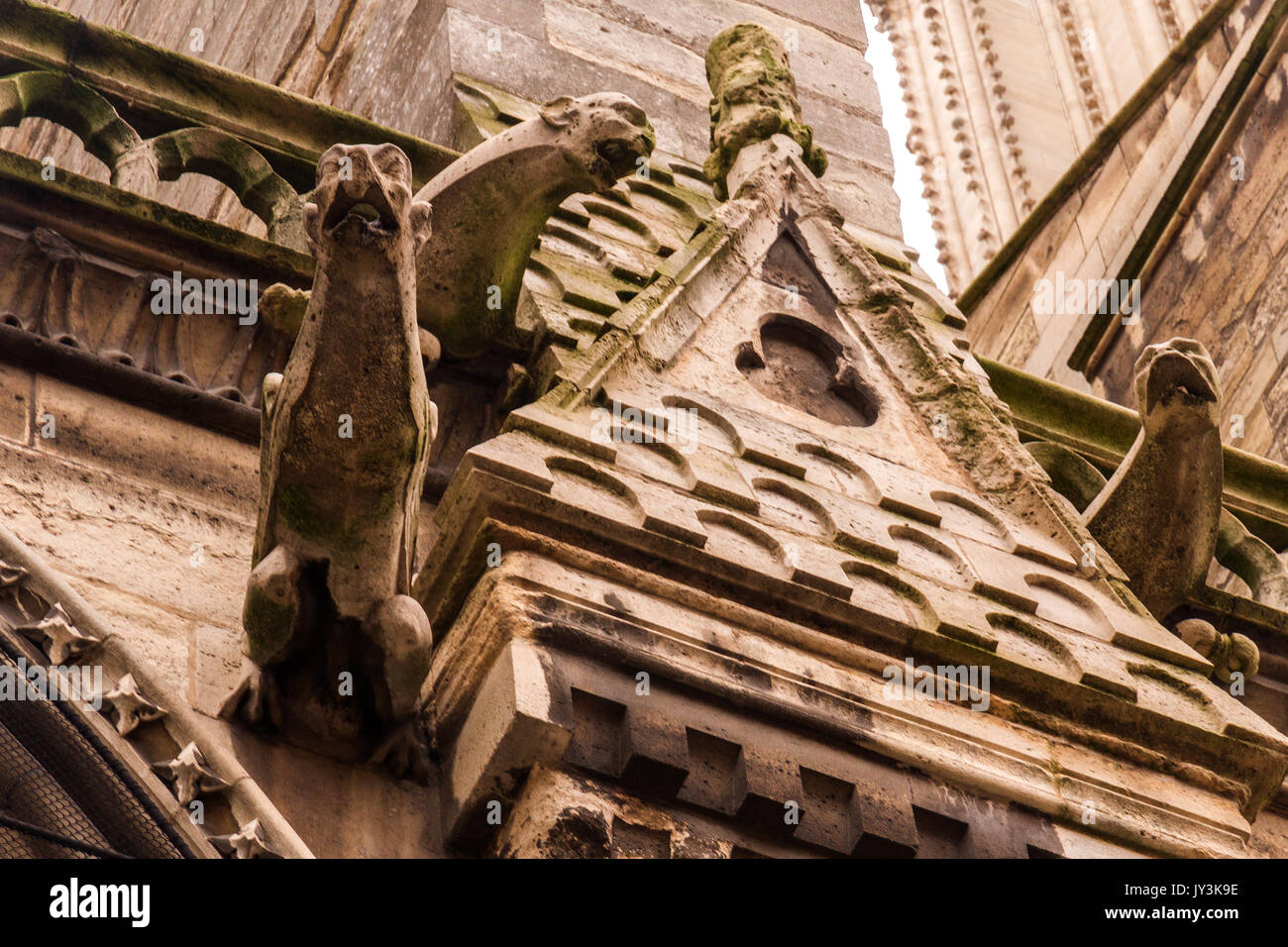 Ancient Gothic Architecture Detail Gargouille Monster On The Wall Of Notre Dame De Paris Cathedral In France Which Is Landmark And Touristic S