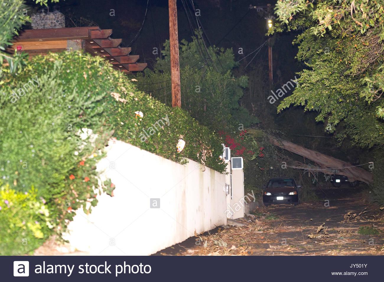 Eric Dane house, tree fall. \'Grey\'s Anatomy\' star Eric Dane has ...