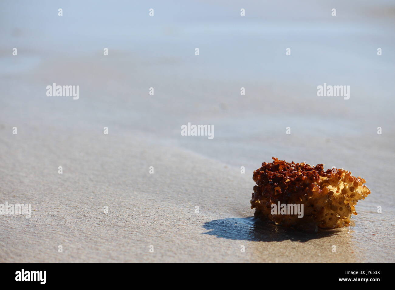 A day at the beach - Stock Image