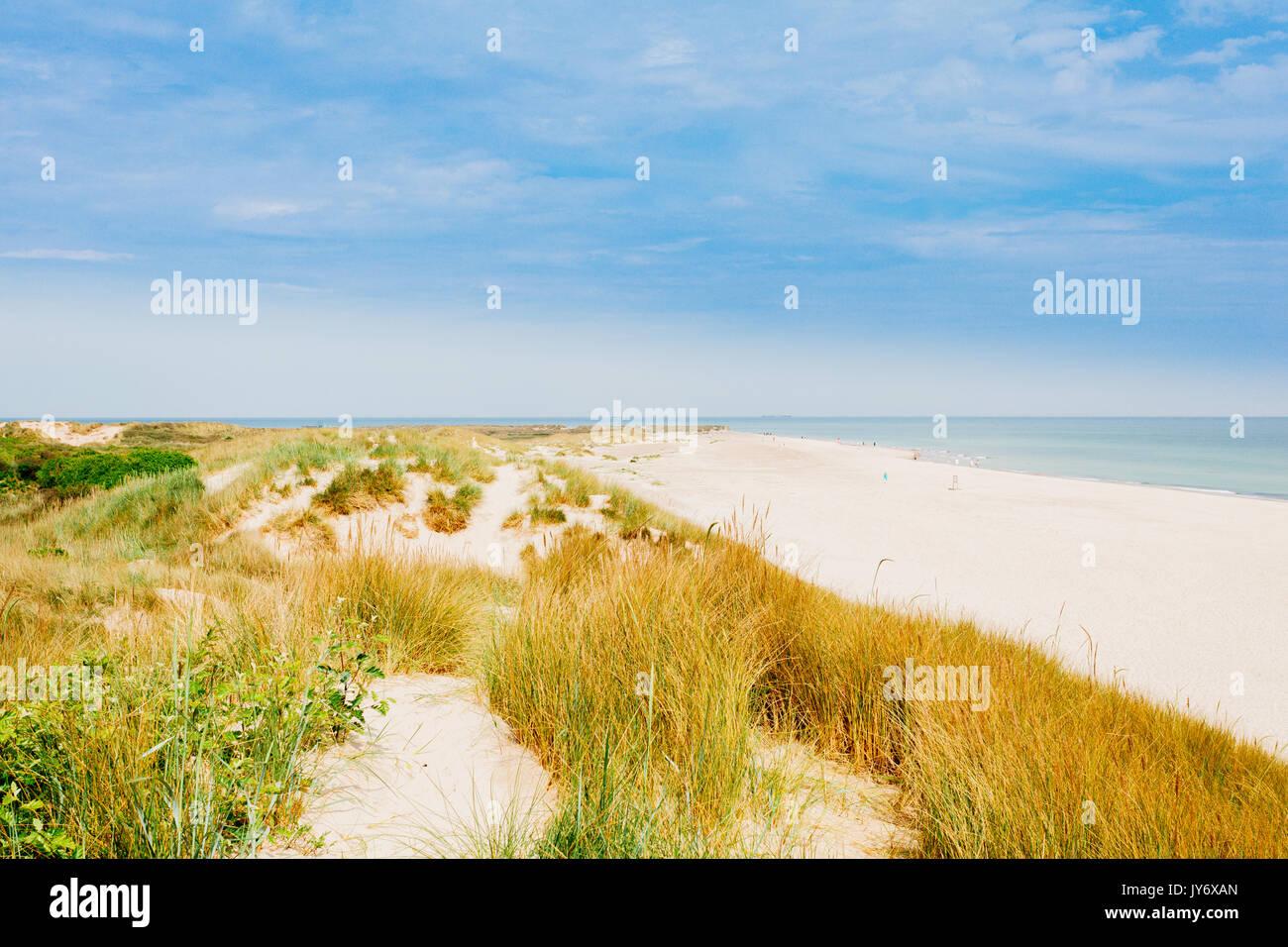 Skagen the sandbar of Grenen - Stock Image