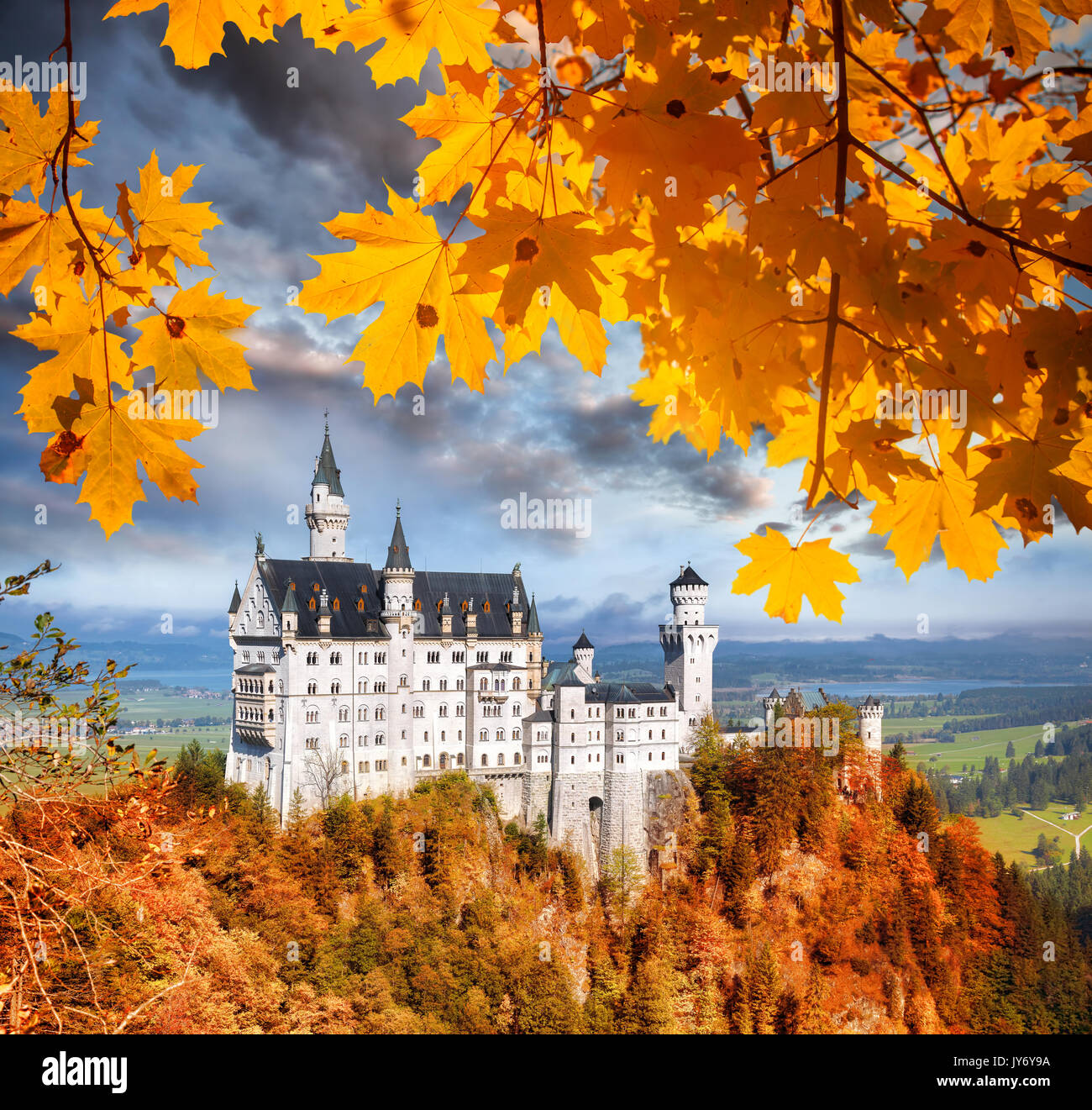 Famous Neuschwanstein castle in Bavaria with autumn leaves, Germany - Stock Image