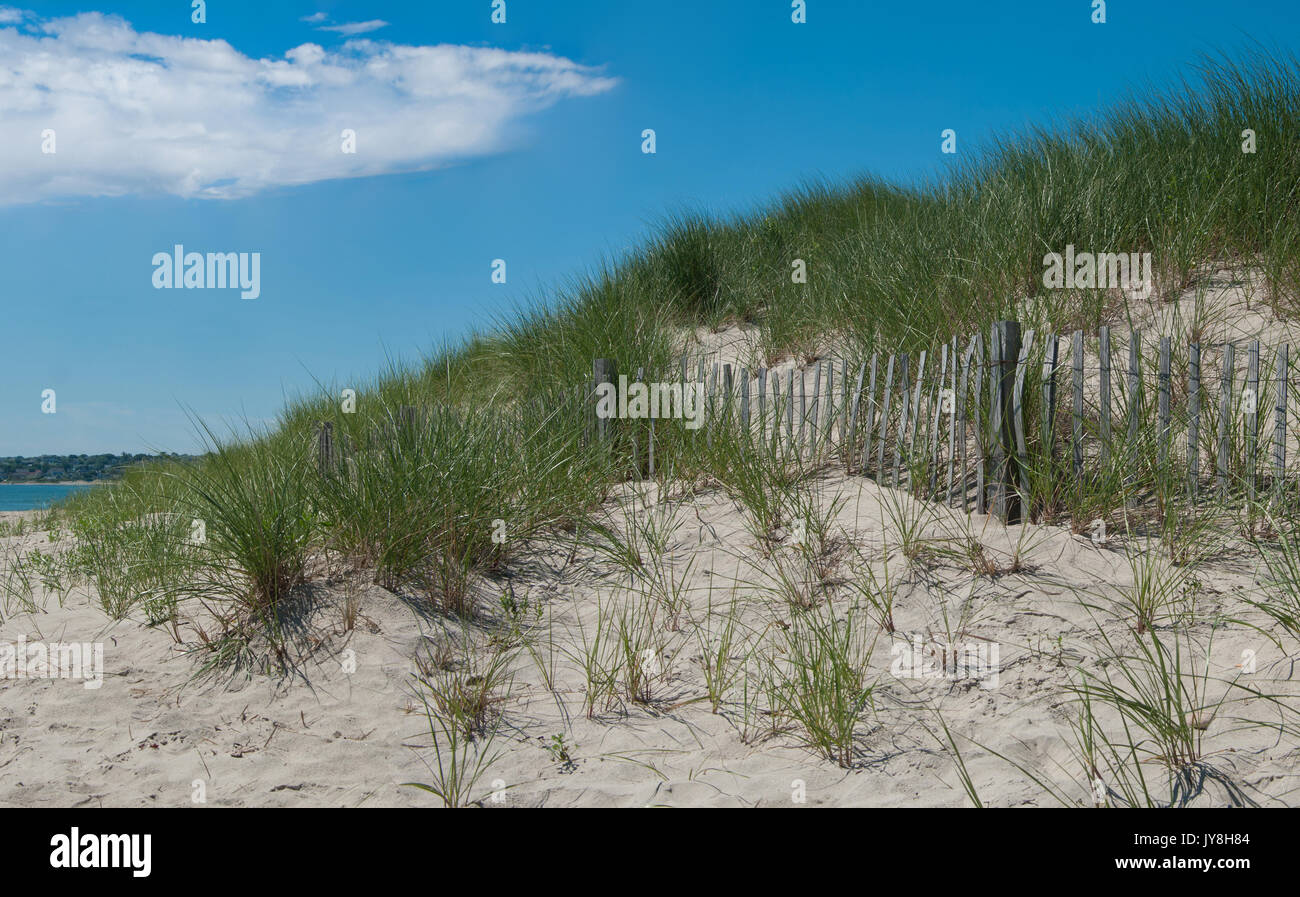 Sand Dune Erosion Fence:  A wooden picket fence holds wind-blown sand and allows grass to take root in dunes on the shore of Block Island - Stock Image