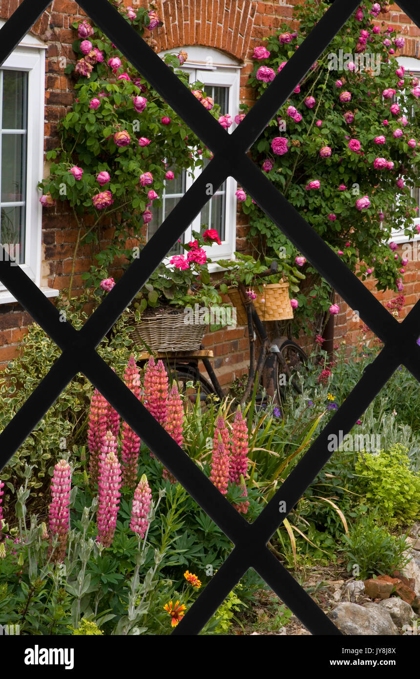 View through lattice window of Cottage flower Garden North Creak ...