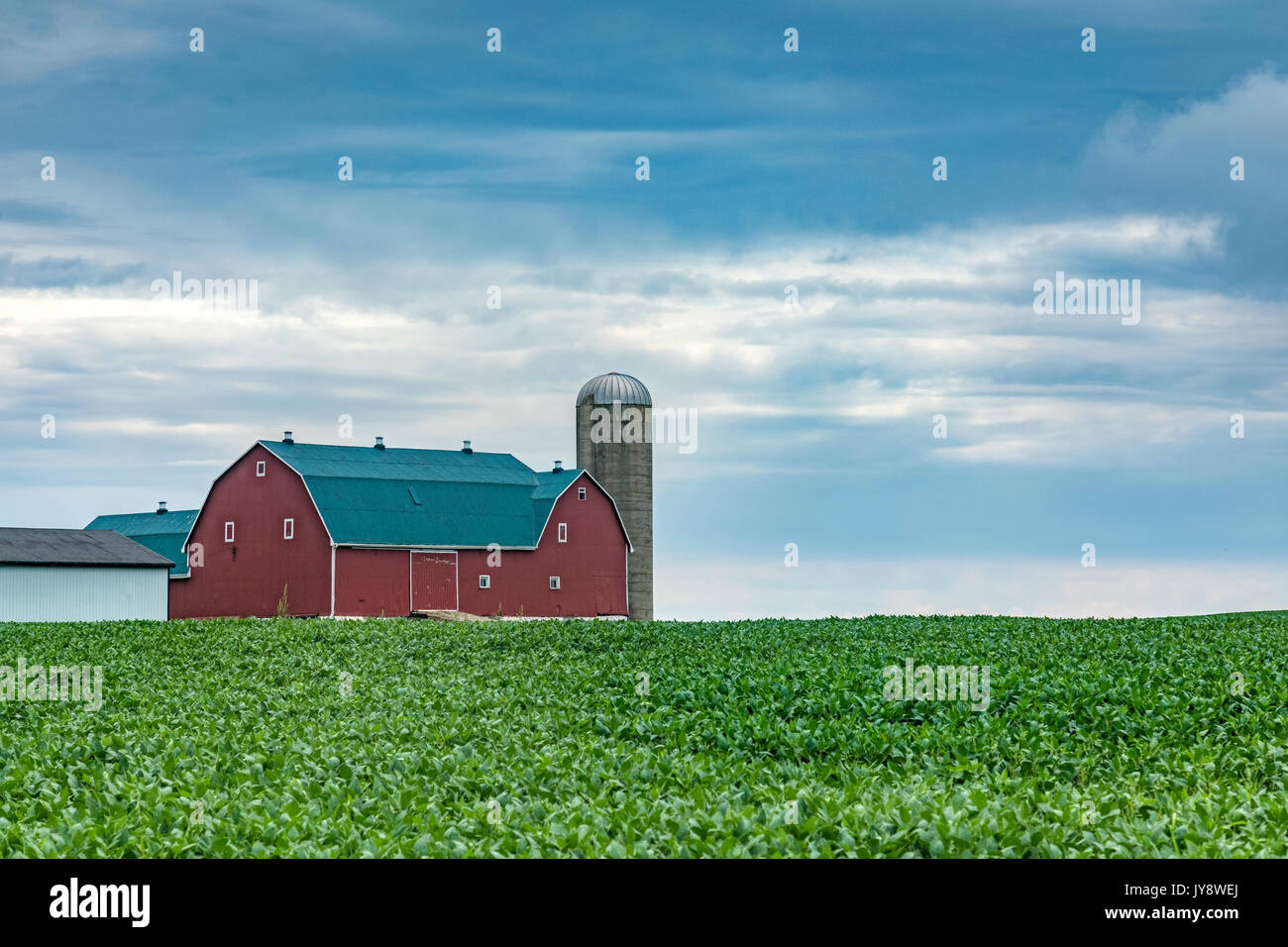 A Northamerican barn with a silo in summer - Stock Image