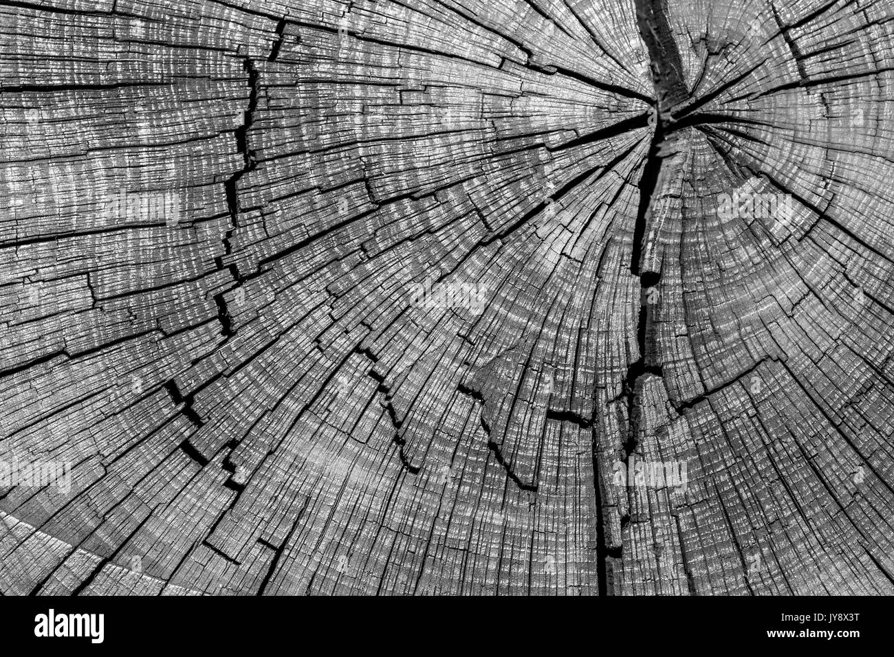 Old Sleeper Cracked Wood Texture High Contrast Background - Stock Image