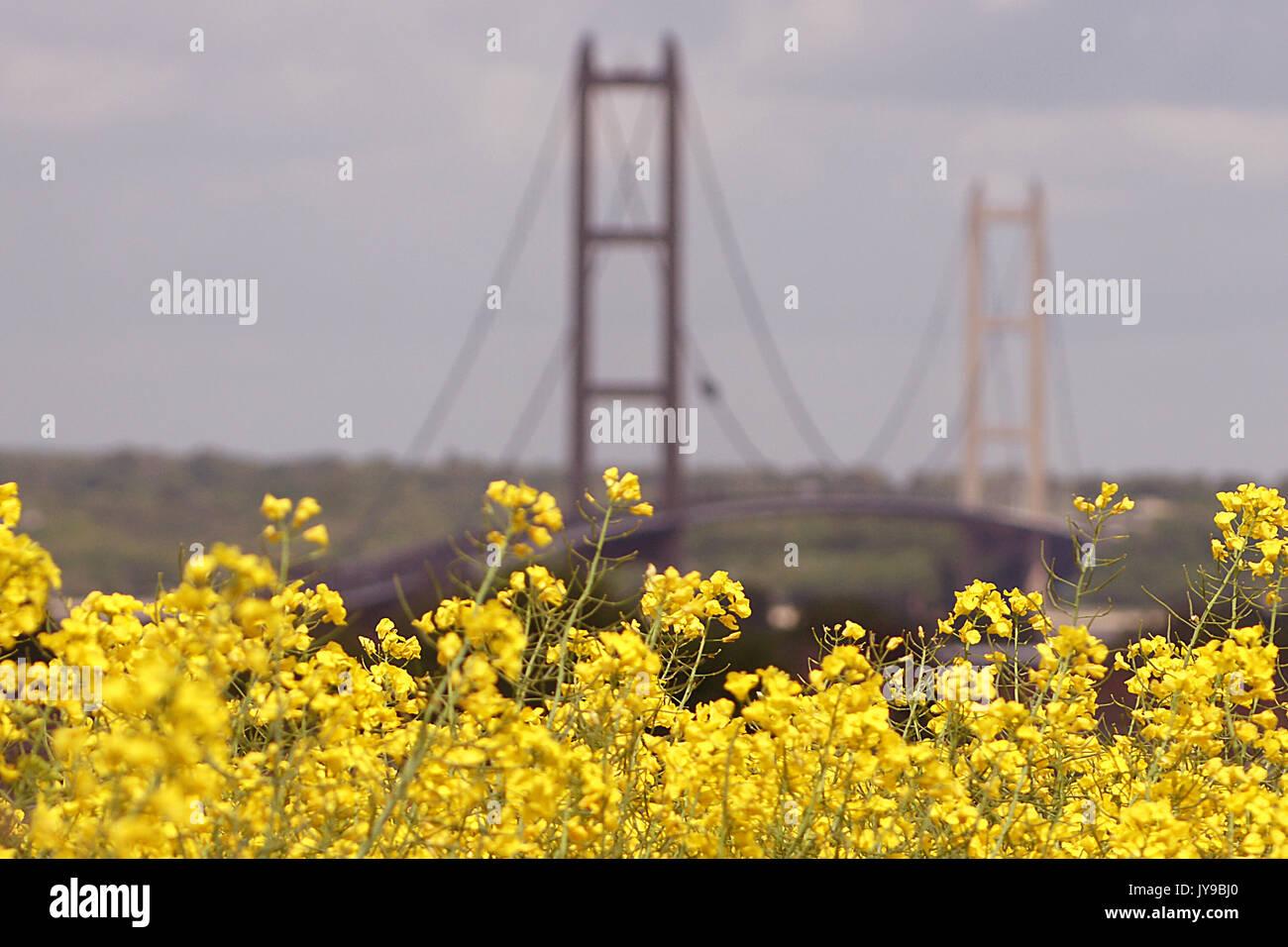 Humber Bridge, barton upon Humber - Stock Image