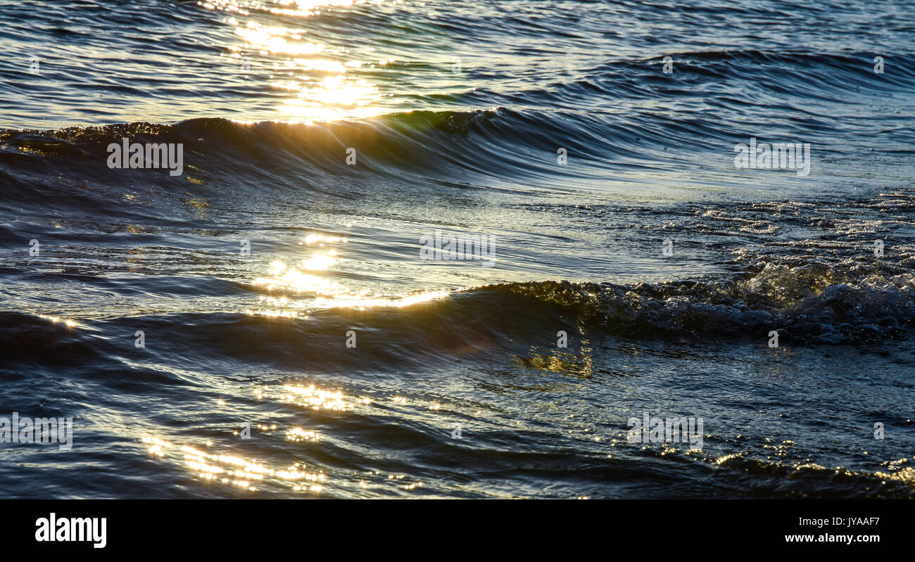 Chasewater Country Park shoreline where small waves roll in on a hot summers afternoon - Stock Image