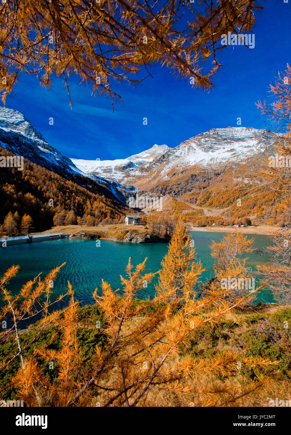 The lake of Alp Grum clashing with the autumn colours of Val Poschiavo and in the background the glacier of Palù Switzerland Europe - Stock Image