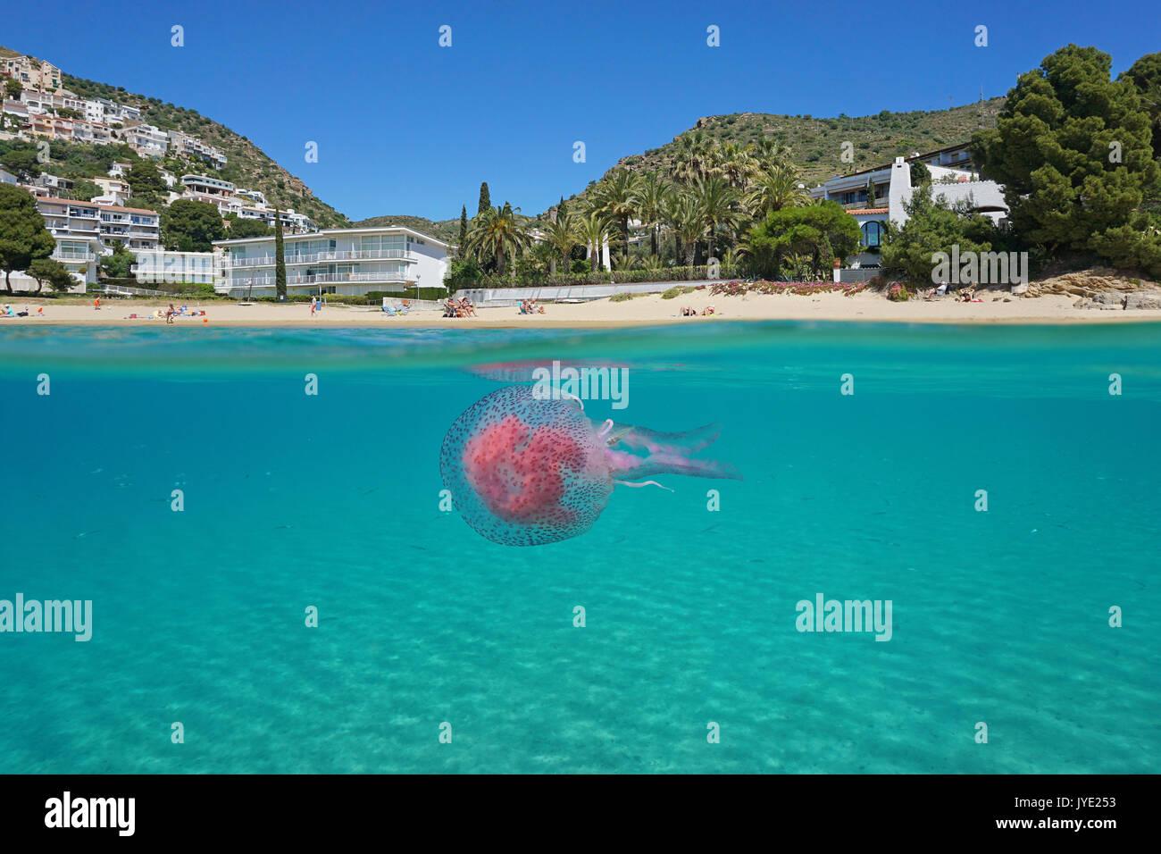 Over and under sea surface near a Mediterranean beach with a jellyfish underwater, Spain, Costa Brava, playa Almadrava, Roses, Girona, Catalonia - Stock Image